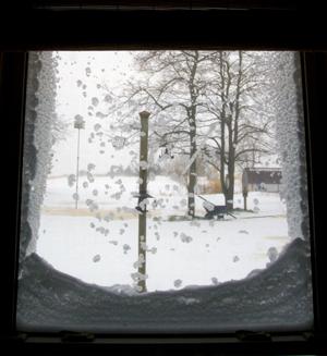 winterstorm2011