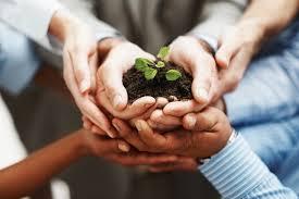 communityplant